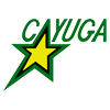 Logo for Cayuga Minor Hockey