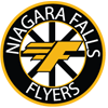 Logo for Niagara Falls Minor Hockey